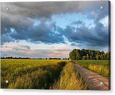 Acrylic Print featuring the photograph Backroad Between The Fields by Dmytro Korol