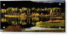 Backwater Blacks At Oxbow Bend Acrylic Print by TL Mair