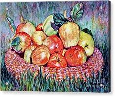 Backyard Apples Acrylic Print