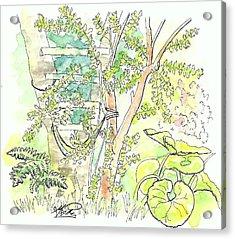 Backyard Acrylic Print by George I Perez
