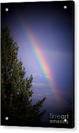 Backyard Rainbow Acrylic Print by Marjorie Imbeau