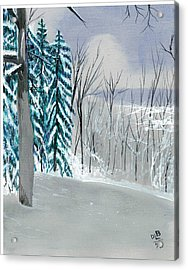 Backyard Snow Acrylic Print