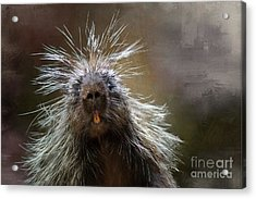 Acrylic Print featuring the mixed media Bad Hairday by Eva Lechner