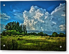 Bad Weather Acrylic Print by Marvin Spates