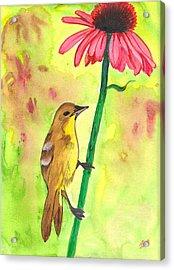 Badbird1 Acrylic Print