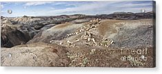 Badlands In Petrified Forest Acrylic Print by Melany Sarafis