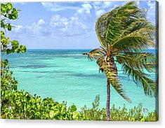 Bahia Honda State Park Atlantic View Acrylic Print by John M Bailey