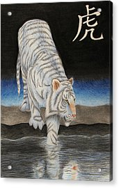 Bai Hu Acrylic Print by Lauren Cawthron