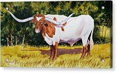 Bailey Acrylic Print