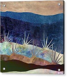 Baja Landscape Number 2 Acrylic Print