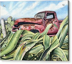 Baja Rust Acrylic Print by James Stanley