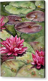 Balboa Water Lilies Acrylic Print by Mary McCullah