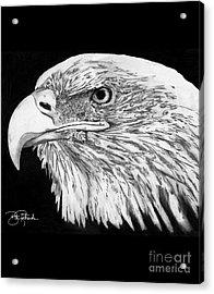 Bald Eagle #4 Acrylic Print by Bill Richards