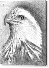 Bald Eagle Acrylic Print by Arline Wagner