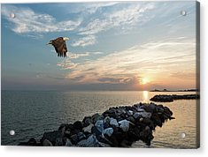 Bald Eagle Flying Over A Jetty At Sunset Acrylic Print