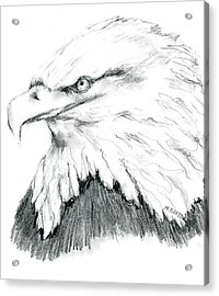 Acrylic Print featuring the drawing Bald Eagle by Marilyn Barton