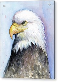 Bald Eagle Portrait Acrylic Print by Olga Shvartsur
