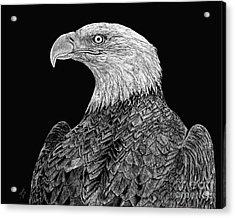 Bald Eagle Scratchboard Acrylic Print