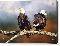 Bald Eagle Watchmen   Acrylic Print