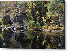 Bald River Autumn Reflection Acrylic Print by Darrell Young