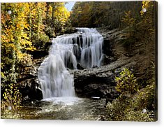 Bald River Falls In Autumn Acrylic Print by Darrell Young