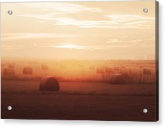 Bales In The Mist Acrylic Print by Todd Klassy