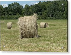Bales Of Hay In New England Field Acrylic Print by Erin Paul Donovan
