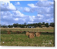 Bales Of Hay Acrylic Print by Therese Alcorn