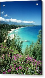 Bali Hai Beach Acrylic Print by Dana Edmunds - Printscapes