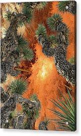 Ballistic Pencils Pnl 3 Acrylic Print by Billy Cox