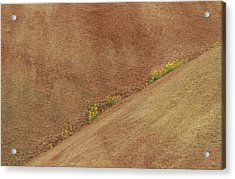Balsam In Painted Hills Diagonal Acrylic Print