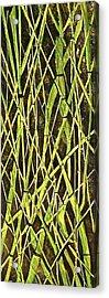 Bambo Garden Acrylic Print