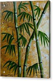 Bamboo Acrylic Print by Agusta Gudrun  Olafsdottir