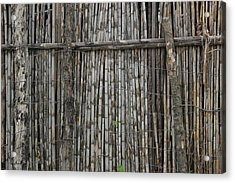 Bamboo And Barbed Wire Fence Acrylic Print by Robert Hamm