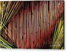 Bamboo And Grass Acrylic Print