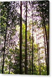 Bamboo And The Cuckoo Acrylic Print by Michael C Crane