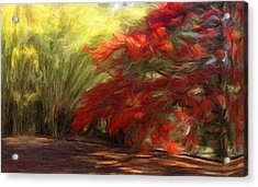 Bamboo And The Flamboyant Acrylic Print