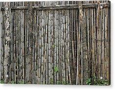 Bamboo Fence Acrylic Print by Robert Hamm