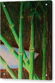 Bamboo Forest Acrylic Print by Bruce Byrnes