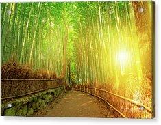 Bamboo Grove Arashiyama Kyoto Acrylic Print