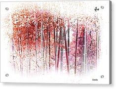 Bamboo Acrylic Print by Eena Bo