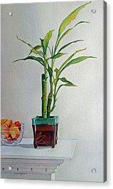 Bamboo Acrylic Print by Judy Mercer