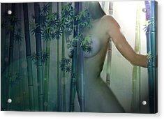 Bamboo Acrylic Print by Kenneth Lambert