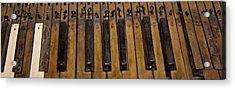 Bamboo Organ Keys Acrylic Print by Betsy Knapp