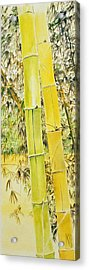 Bamboo Acrylic Print by Rainer Jacob
