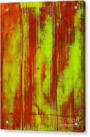 Bamboo Spy  1 Acrylic Print by Teo Santa