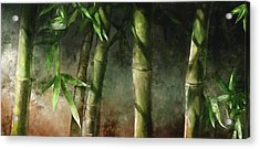 Bamboo Stalks Acrylic Print