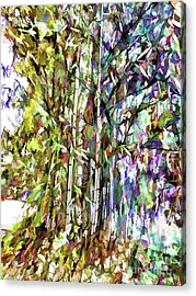 Bamboo Trees In Park Acrylic Print by Lanjee Chee