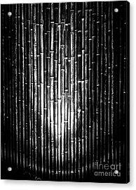 Bamboozled Acrylic Print by James Aiken