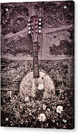 Banjo Mandolin On Garden Wall Acrylic Print by Bill Cannon